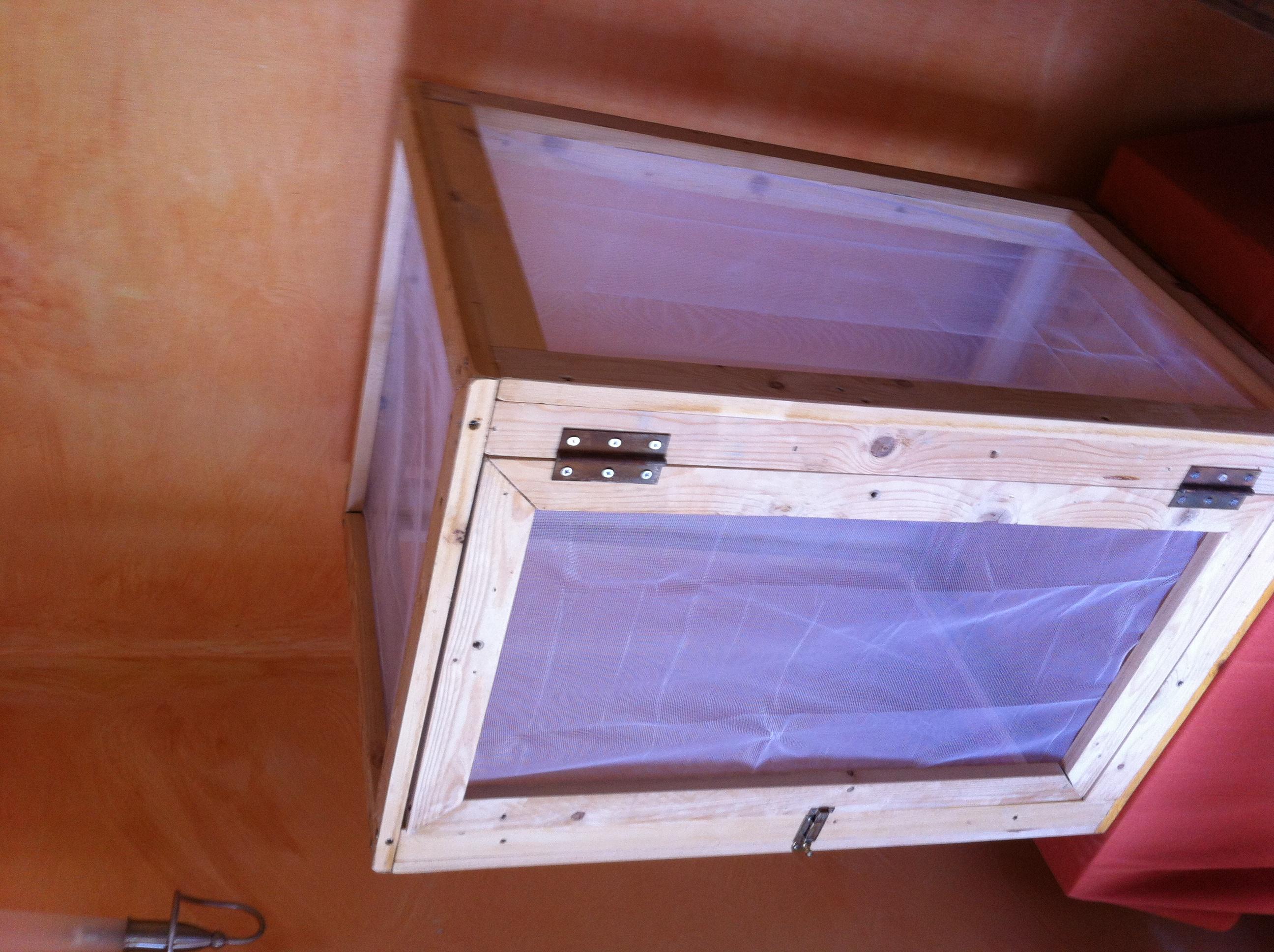 mein scmhetterlings flugk fig schmetterlinge. Black Bedroom Furniture Sets. Home Design Ideas